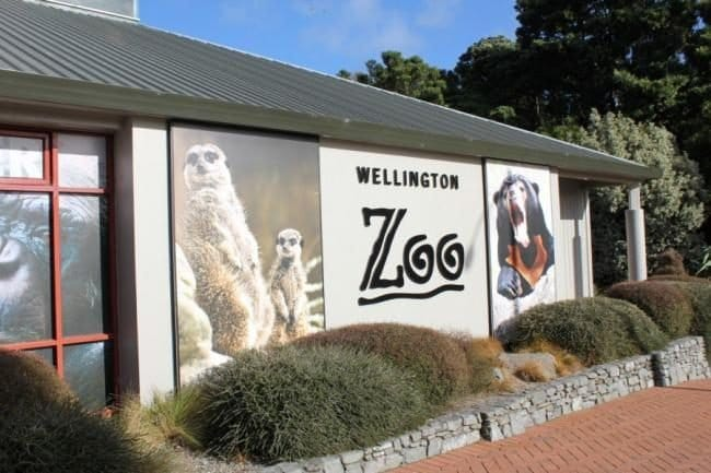 Zoo Wellington | BEST ZOOS IN THE WORLD